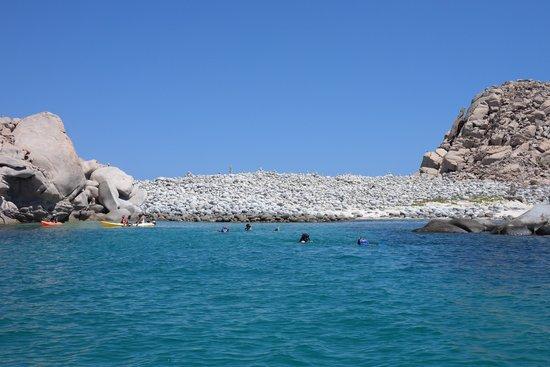 Cabo Pulmo Marine Preserve: imposible salir de ahi