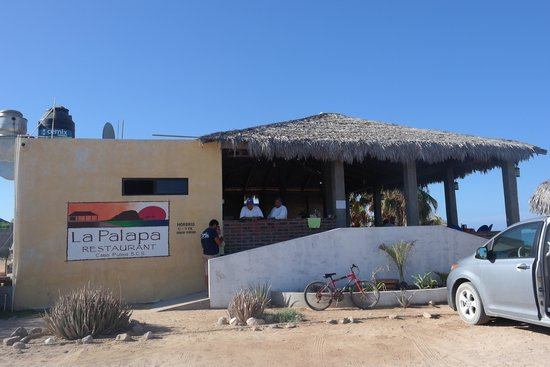 Cabo Pulmo Marine Preserve: Deliciosa comida en la Palapa