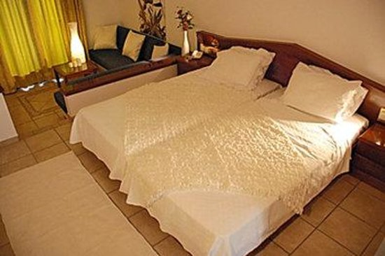Hotel Europa: Guest Room