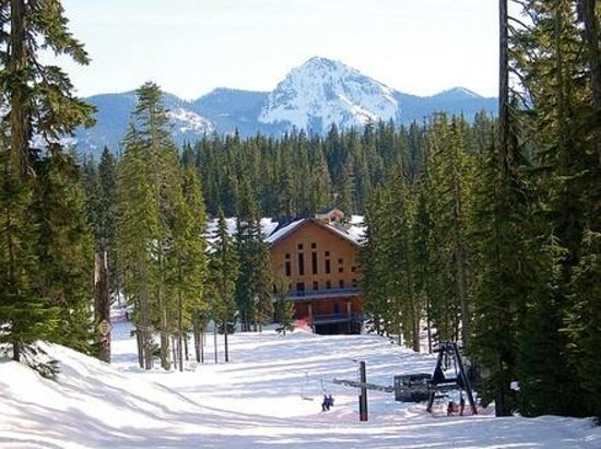 Bluewolf Motel: Local Area Attraction: Willamette Ski Resort