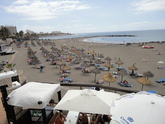 Plaża 7 minut od hotelu, widać z lewej strony wysoki hotel - Sol Tenerife