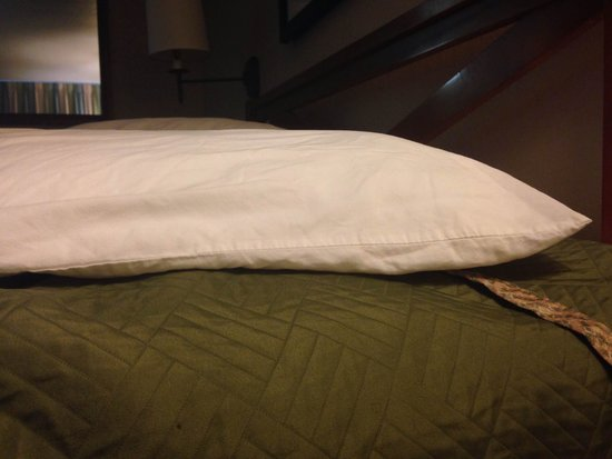 Travelodge New Orleans West Harvey Hotel: Very paper-thin pillows