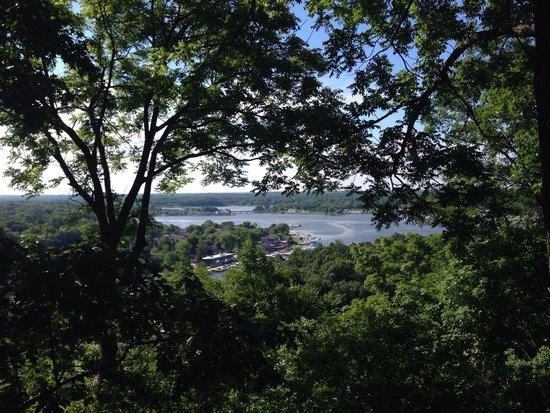 Mount Baldhead Park: View from the top