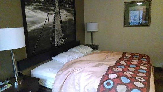 Super 8 Idaho Falls : King bed