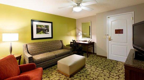Hilton Garden Inn Indianapolis/Carmel: Suite living area