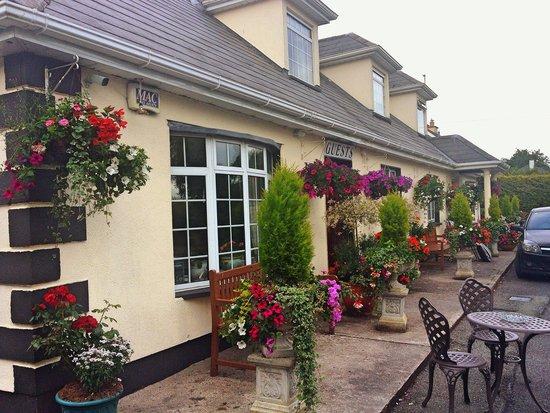 Curragh Plains B&B: You should see the gardens!