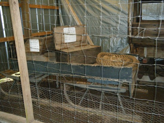 Tom's Historic Logging Camp: One of the exhibits