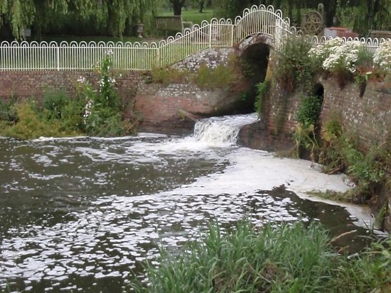 Haxted Mill : July