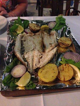 Selam Restaurant: Sea Bass