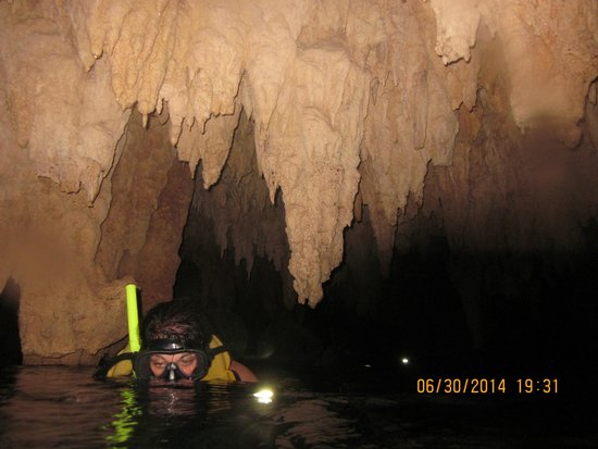 Edventure Tours: In the cenote / cave snorkeling