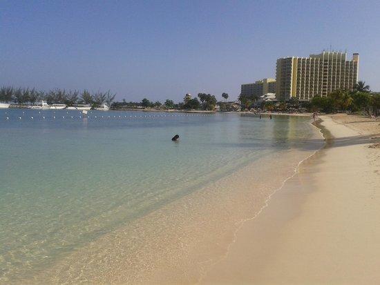 Ocho Rios Bay Beach: panorama