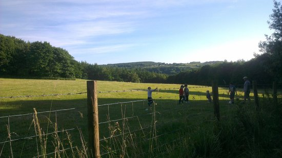 West Wood Yurts: The field behind the yurts