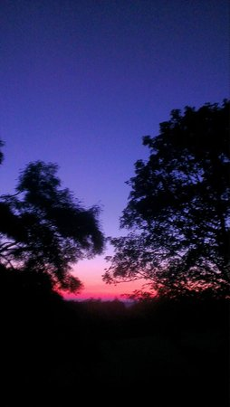 West Wood Yurts: Sunset