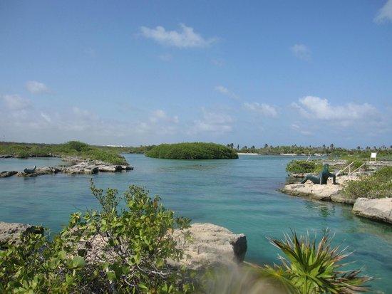 Edventure Tours: the lagoon