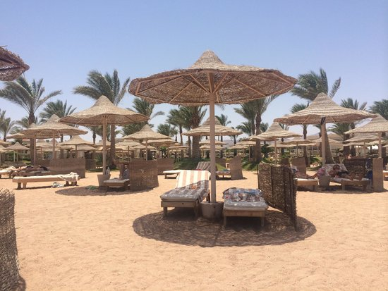 Royal Albatros Moderna Sharm el-Sheikh: Beach
