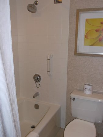 Boston Marriott Copley Place: shower in bathtub