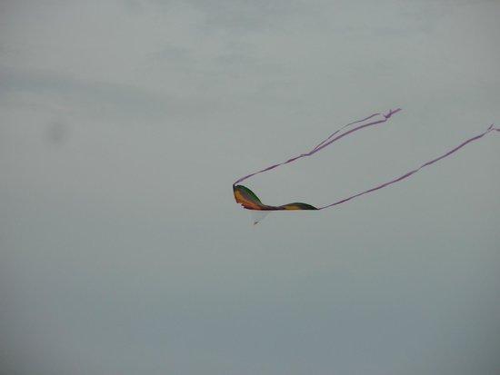 Sandy Beach Resort : kite outside our room