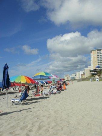 Sandy Beach Resort: on the beach