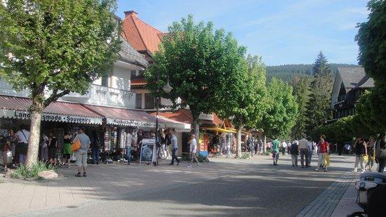 Romantik Hotel Treschers: main street of the lake
