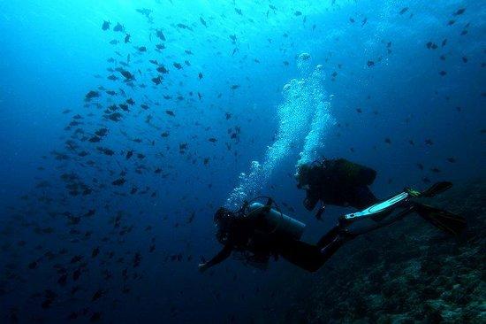 Diving at Soneva Fushi