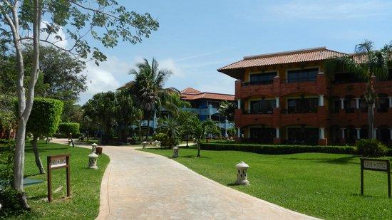 Iberostar Paraiso Beach: camimos dentro del hotel