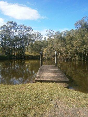 Barking Owl Retreat : The Dam