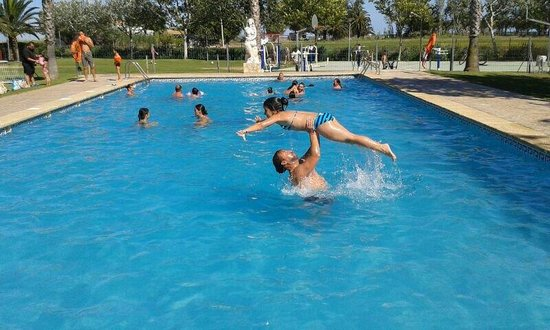 Dirty dancing en piscina camping eucaliptus fotograf a for Piscina amposta