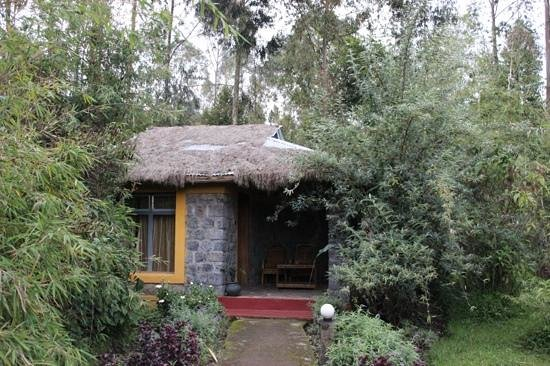 Le Bambou Gorilla Lodge: the cottage