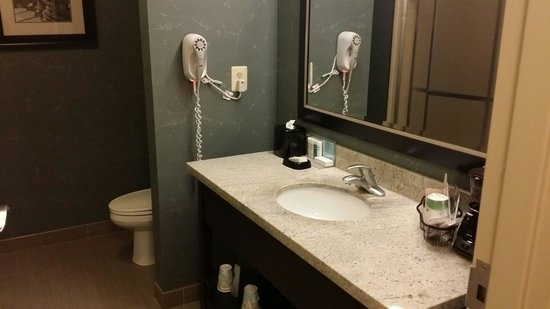 Hampton Inn & Suites Edgewood/Aberdeen-South: Bathroom area