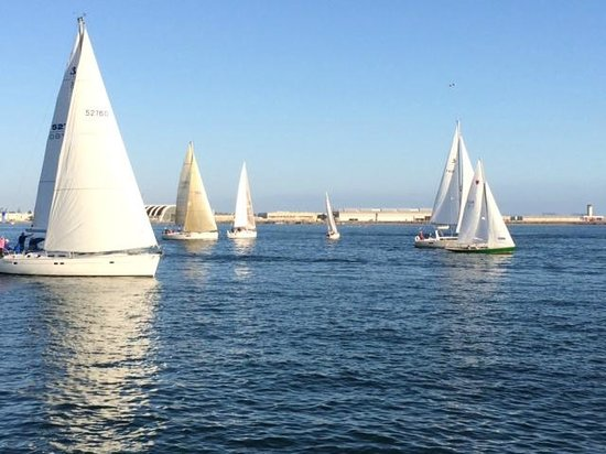 Hilton San Diego Bayfront: It's the beer can race!