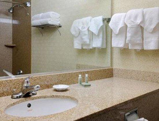 Baymont Inn & Suites Houston- Sam Houston Parkway: Bathroom