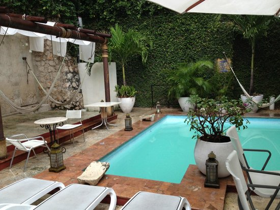 Piedra de Agua Hotel Boutique: Hammocks and Pool in Courtyard