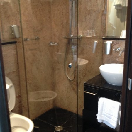 BEST WESTERN Apollo Museumhotel Amsterdam City Centre: Small but lovely wet room