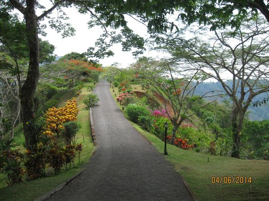 Jaco, Costa Rica: Garden path