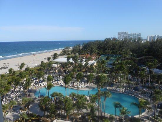 Fort Lauderdale Marriott Harbor Beach Resort & Spa: Pool View