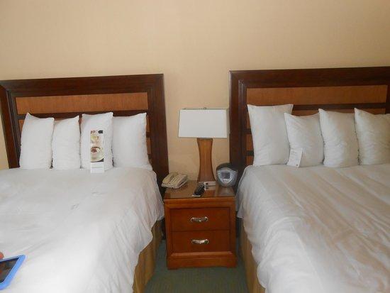 Fort Lauderdale Marriott Harbor Beach Resort & Spa: Room