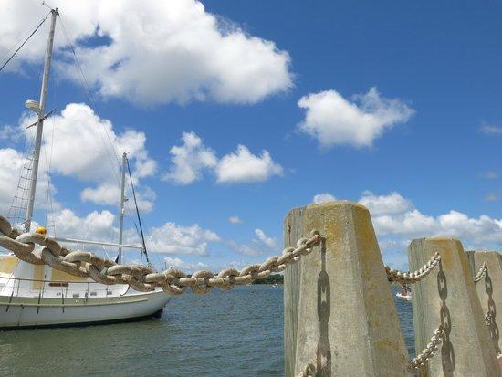 The Rhett House Inn : Nearby marina