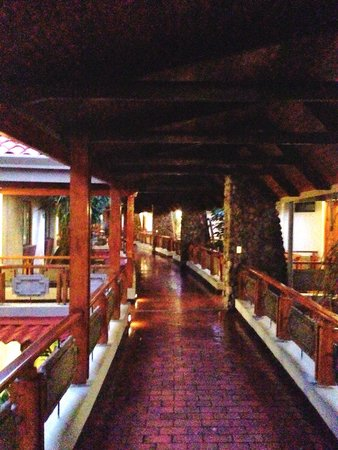 DoubleTree by Hilton Hotel Cariari San Jose : Hallway to room.  Beautiful outdoor space.