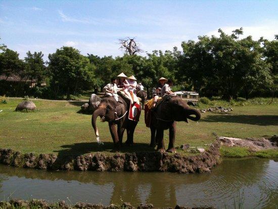 Mara River Safari Lodge: Elephant safari passing our room