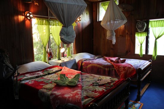 Aquarius Inn: Double room
