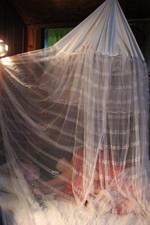Aquarius Inn: Mosquito net