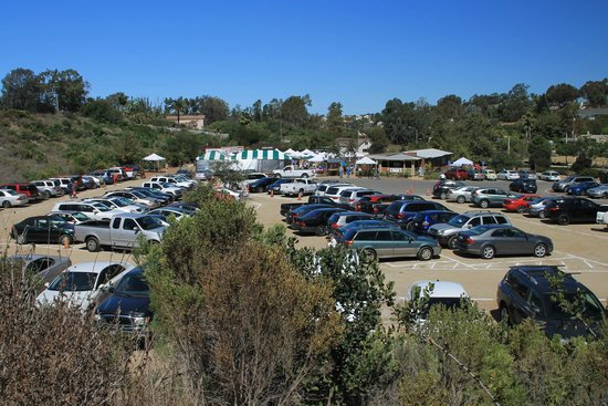San Dieguito Heritage Museum: During the annual Lima Bean Cook Off.