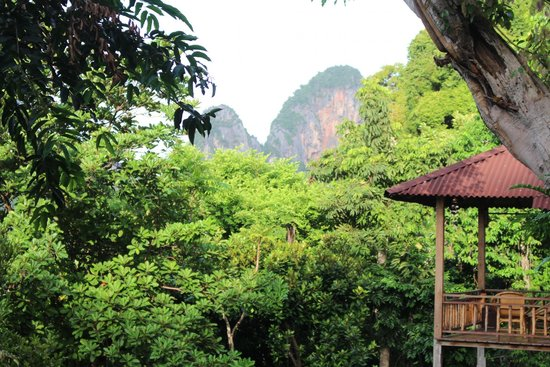 Railay Garden View Resort: Cliffs.