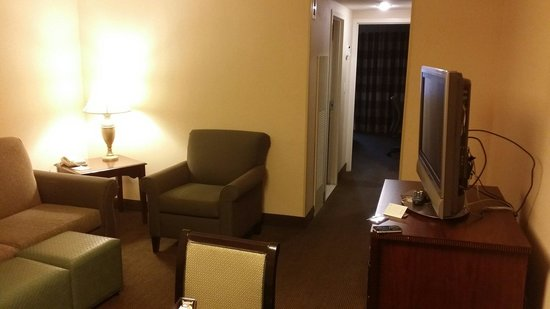 Embassy Suites by Hilton Baltimore BWI - Washington Intl. Airport: TV area
