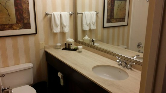 Embassy Suites by Hilton Baltimore BWI - Washington Intl. Airport: Bathroom