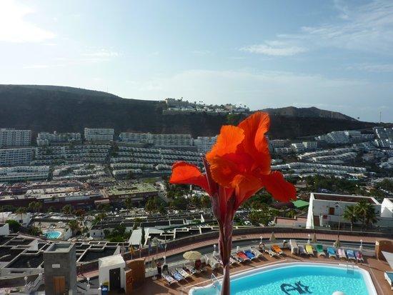 Apartamentos Rocamar: view from room 508