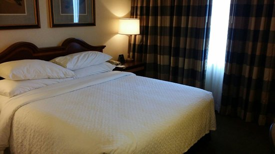 Embassy Suites by Hilton Baltimore BWI - Washington Intl. Airport: Bedroom