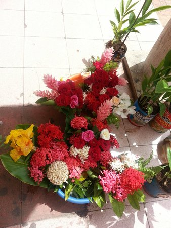 Big Mercado : Los colores de México!!