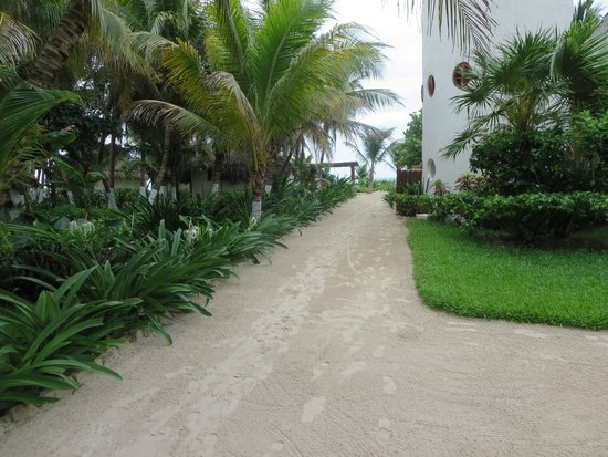 Maya Tulum Retreat & Resort : The tropical path to our Cabana