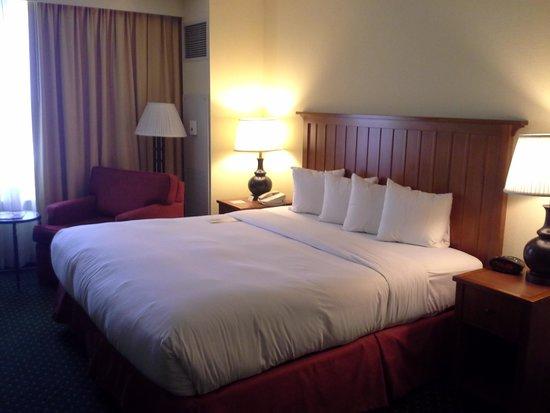 Doubletree Hotel Chicago Oak Brook: Bedroom